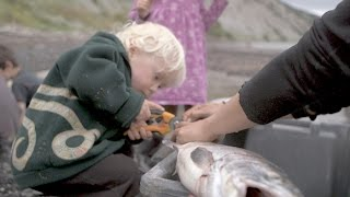 Download How Subsistence Fishing Keeps You Fed on the Frontier Video