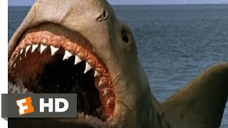 Download Jaws: The Revenge (8/8) Movie CLIP - Killing the Beast (1987) HD Video