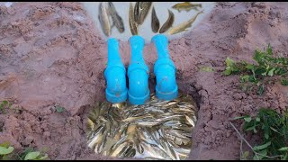 Download Creative Girl Make Fish Trap Using PVC Water Pipe To Catch A Lot Of Fish Video