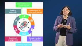 Download Mary Beckerle (University of Utah) Part 1: Adhesion, Signaling and Cancer Video