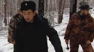Download Полиция против лесной мафии Video