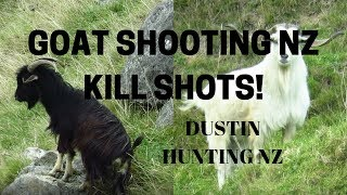 Download GOAT SHOOTING NZ 2019 Video