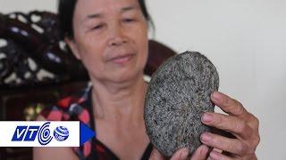 Download Xôn xao 'cát lợn' 21 tỷ đồng ở Hà Nội | VTC Video