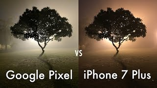 Download iPhone 7 Plus vs Google Pixel Camera Comparison Video