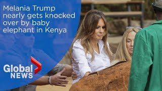 Download Melania Trump nearly gets knocked over by baby elephant in Kenya Video