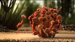Download Team work pays off - cool examples - VERY FUNNY Video