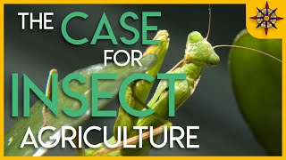 Download The Case for Insect Agriculture Video
