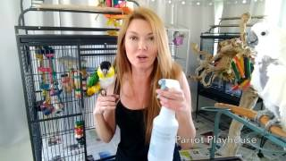 Download 🐦Cage Cleaning at Parrot Playhouse❤️ Video