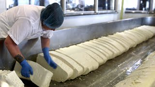 Download How Cheese Is Made Video