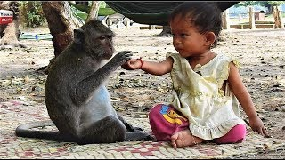 Download Strong Relationship Kid & Monkey/ Lovely friends Animals with humans Youlike Monkey 1302 Video