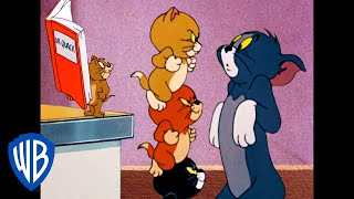 Download Tom & Jerry | Home But Not Alone! | Classic Cartoon Compilation | WB Kids Video