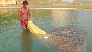 Download Unbelievable Shrimp Fishing at Dam / Fish Hunting Fishing Video