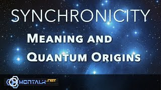 Download Synchronicity: The Meaning and Quantum Origins of Seven Types of Synchronicities Video
