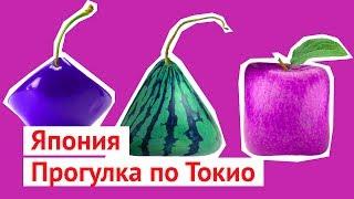 Download Каникулы в Японии: перелет в Токио, женщины и фрукты Video