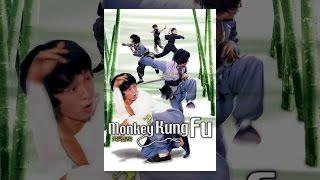 Download Monkey Kung Fu Video