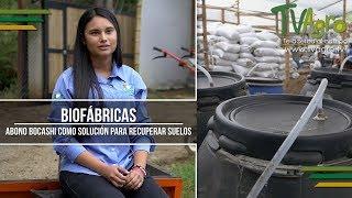 Download Biofábricas: Abono Bocashi como solución para Recuperar Suelos - TvAgro por Juan Gonzalo Angel Video