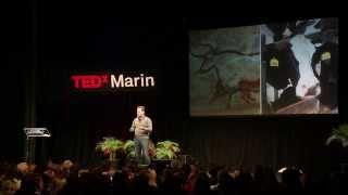 Download The bio-printing of leather and meat: Andras Forgacs at TEDxMarin 2013 Video