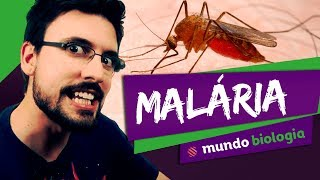 Download 👾 Malária - Mundo Biologia - ENEM Video
