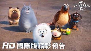 Download 【寵物當家】最新預告-6月29日 歡樂登場 Video