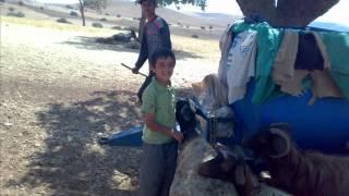 Download Balpınar Köyü / Giresore Metina Video