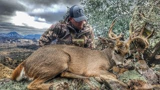 Download 5 In 5 In Mexico - BIG COUES BUCKS in MEXICO Video