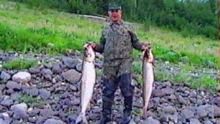 Download Заполярье Рыба белая Нельма Video