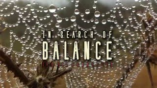 Download In Search of Balance - Official Trailer Video