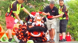 Download 2016 Lion Dance - Eye Dotting and Stage Performance - Boston Community Event in Chinatown Video