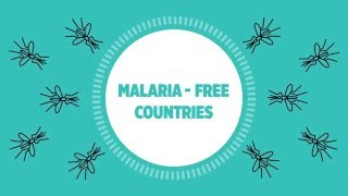 Download WHO: Global malaria progress and challenges in 2016 Video