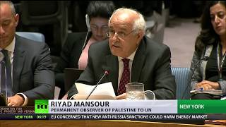 Download 'Tipping point': Israel & Palestine trade barbs at UNSC over Jerusalem protests Video