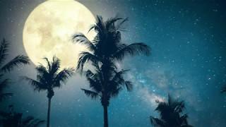 Download Get To Sleep Fast & Easy! ➤ Healing SLEEP Music | The Deepest Sleep | 432Hz Sleeping Music Video