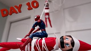 Download ELF on the SHELF DAY 10 Video