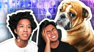 Download TRY NOT TO CRY CHALLENGE! Video
