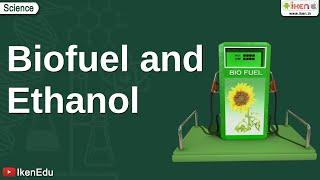 Download Biofuel and Ethanol Video