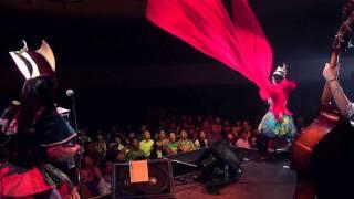 Download チャラン・ポ・ランタン 「サーカス・サーカス(LIVE ver.)」 MUSIC VIDEO Video