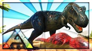 Download T REX VERSUS ALPHA CARNO? (Ark Survival) Video