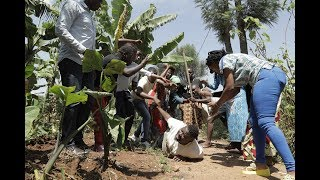 Download PAPA SAVA EP96:KIRYA ABANDI BY NIYITEGEKA Gratien (Rwandan Comedy) Video