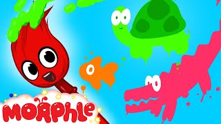 Download My Magic Colors - Learn Colors With My Magic Pet Morphle Episode #14 Video