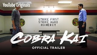 Download Official Cobra Kai Trailer - The Karate Kid saga continues Video