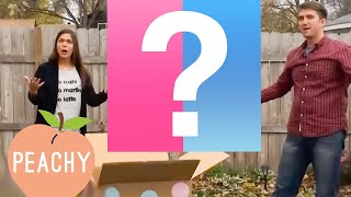 Download 100 Funny Baby Gender Reveals! | Cute Family Compilation Video