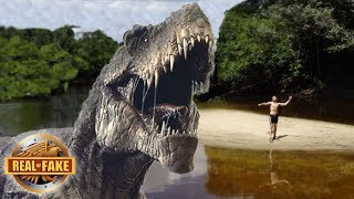 Download LIVING DINOSAUR DISCOVERED IN AMAZON JUNGLE - real or fake? Video