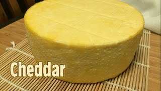 Download How to make Cheddar Cheese (Cloth Banded) Video