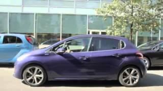 Download Peugeot 208 Intuitive - Park Assist ( feline.cc ) Video