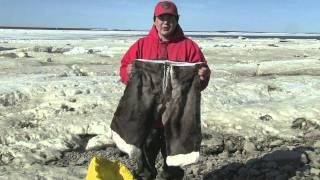 Download Inuit Survival Skills that will Save your Life in the Arctic Video