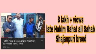 Download Hakim rahat ali sahajanpuri highflyers pigeons by kamal arora Video
