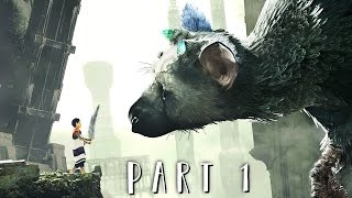 Download THE LAST GUARDIAN Walkthrough Gameplay Part 1 - Trico (PS4 PRO) Video