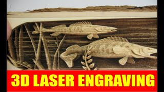 Download 3D Laser Cutting and Engraving Video
