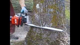 Download Stihl 039 MS390/391 Modified Muffler 28″ bar - Shredder II Directional Felling Big Oak tree Video