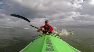 Download Kayak Surfing Shark Encounter Video