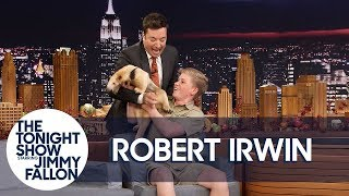 Download Jimmy Gets Attacked by Robert Irwin's Anteater Video